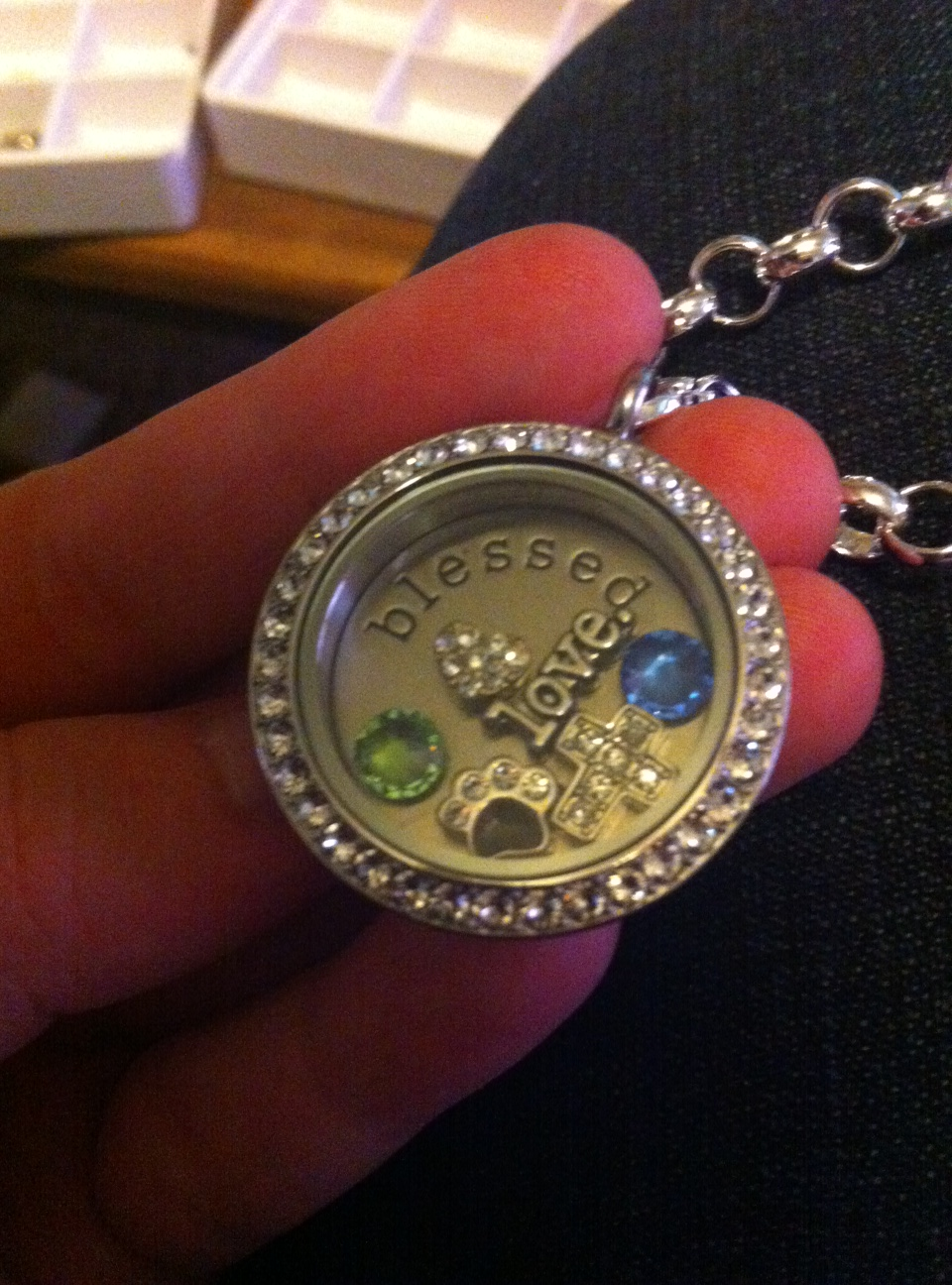 "This is my living locket! It's a large silver twist locket with crystals with my birthstone, Matt's birthstone, a puppy paw for my girls, a heart, and love, a cross with a back plate that says ""Blessed"". Tell me what your story is!"